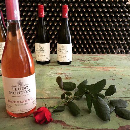 Wines of Sicily - Feudo Montoni